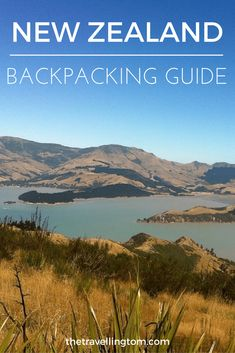 Backpacking in New Zealand pin