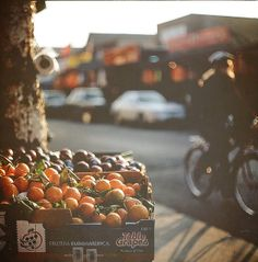 Oranges, bikes, and gorgeous light.