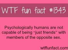 "Wtf Fun Fact #1343 ""Just friends"""