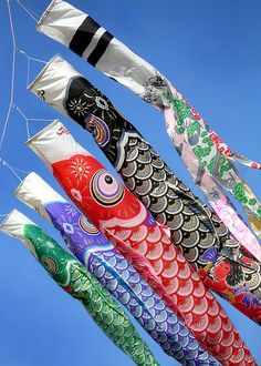 omochiwokudasai:    こどもの日:鯉幟 Children`s Day Koinobori (by Melissa Rose Chasse)  Children's Day (こどもの日 / Kodomo no hi) is a Japanese national holiday which takes place annually on May 5, the fifth day of the fifth month, and is part of the Golden Week. It is a day set aside to respect children's personalities and to celebrate their happiness. It was designated a national holiday by the Japanese government in 1948.  via Wikipedia