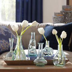 Ainsley Bud Vases