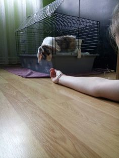 OMG 😱... a hand ✋?!