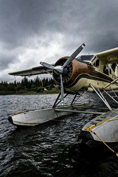 Beaver cub portrait by Per-Anders Nilsson - Photo 77836703 - Deco Aviation, Aviation Art, Sea Plane, Float Plane, Avion Cargo, Bush Pilot, Plane And Pilot, Bush Plane, Old Planes