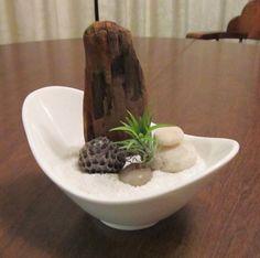 Zen Air Plant Dish Garden Natural Elements by WindsofFancyDesigns