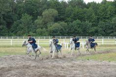 Bugac Puzsta - Horse show Show Horses, Hungary, Animals, Animales, Animaux, Animal, Animais, Race Horses