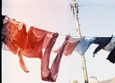 Hanging your clothes out to dry,sunlight and a breeze