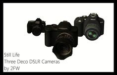 Still Life - Three Deco DSLR Cameras by 2FW - Two Fingers Whiskey