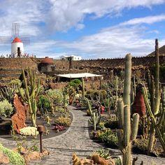 Jardin de Cactus: I Left My Heart in Lanzarote — The Traveler's Journey — Travel Blog