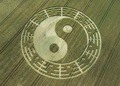 Yin Yang Crop Circle