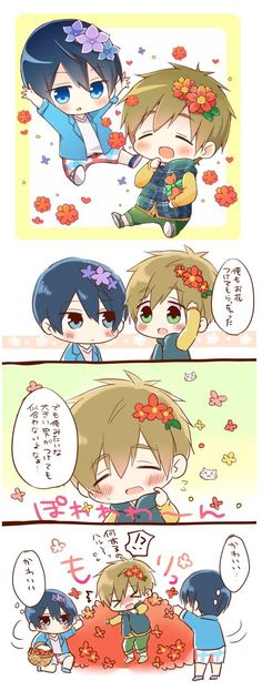 Because Makoto looks so pretty with his birthday flower, Haru keeps showering Makoto in his birthday flower ...   Free! - Iwatobi Swim Club, free!, iwatobi, makoto tachibana, makoto, tachibana, haruka nanase, haru nanase, haru, haruka, nanase