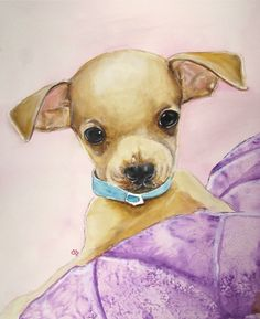 Tough Guy Chihuahua Puppy Original Watercolor by PaintedbyCarol, $200.00
