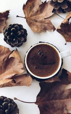 🍃🌹🍃 - # # Food and Drink art colour But First Coffee, I Love Coffee, Coffee Break, My Coffee, Coffee Mugs, Coffee Photography, Food Photography, Coffee And Books, Coffee Cafe