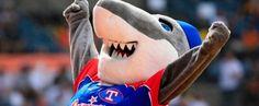 Tiburones de La Guaira ganan y ponen más caliente el último cupo para el Round Robin
