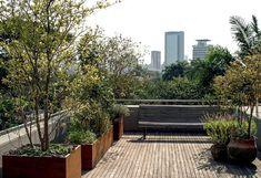 Pergola With Metal Roof Diy Pergola, Pergola Canopy, Pergola Kits, Porches, Rooftop Terrace, Terrace Garden, Outdoor Landscaping, Outdoor Gardens, Roof Gardens
