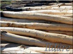 Wood For Sale, Walnut Wood, Pergola, Art Deco, Black, Black People, Outdoor Pergola, Art Decor