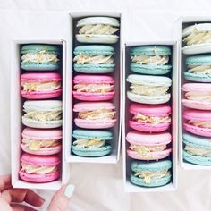 {{ french macarons /