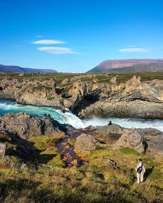 Chegar na Islândia pode não ser muito barato mas lá você pode economizar muito. Todas as cachoeiras que visitamos não cobravam taxa de visitação. Apenas estacionávamos o carro próximo e caminhávamos por onde queriamos ao redor da cachoeira. Essa paisagem é na área da cachoeira Godafoss. #NerdsNaIslândia