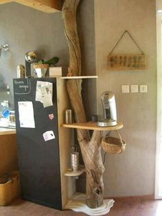 cool use of tree branch