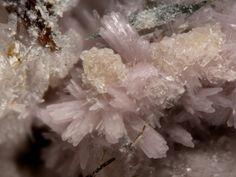 Calcioancylite-Ce, (Ca,Sr)Ce(CO3)2(OH) · H2O, Poudrette quarry (Demix quarry; Uni-Mix quarry; Desourdy quarry), Mont Saint-Hilaire, Rouville Co., Québec, Canada. Fov 3 mm