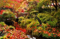 butchart gardens Leaves begin to fall - Buchart Gardens, Vancouver Island, British Columbia.