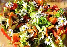 Visste du att det finns många vilda växter, blad och blommor som du kan äta? Som är både milda och goda och dessutom erbjuder ett inslag av fräscht nytänk i sommarsalladen? Men med flera av dem har du bara ett fåtal veckor på dig innan de antingen slutar blomma eller blir för beska i smaken. Så y