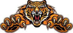 Tiger Jump Royalty Free Cliparts, Vectors, And Stock Illustration. Tiger Face Drawing, Tiger Silhouette, Tiger Vector, Tiger Claw, Tiger Illustration, Tiger Art, Tiger Tiger, Tiger Logo, Tiger Tattoo