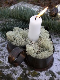 Nice for the #winter #garden. Or as a 'welcome' at the frond door. | kiem - way of life...
