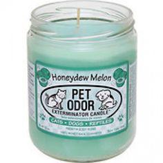 Honeydew Melon Pet Odor Exterminator Candle
