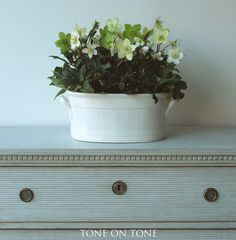 Tone on Tone - Interior & Garden Design: Ironstone: Harmony in White Pallet Painting, Stencil Painting, Swedish Decor, Interior Garden, Duck Egg Blue, My Flower, Flower Designs, Color Inspiration, Painted Furniture
