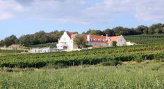 Liszkay Vineyard Estate (Monoszló)