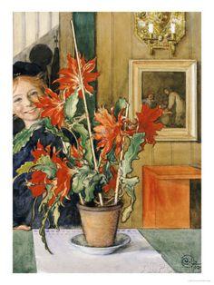 Brita's Cactus, 1904. Carl Larsson, Zweden.