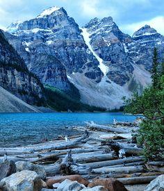 Logpile at Moraine Lake.  Banff National Park.  by Jeff Clow.