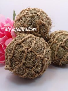 Netted ball chock full of dried grass. Great as a foot toy. Hide treats for foraging. Measures 3 1/2 in. $1.89
