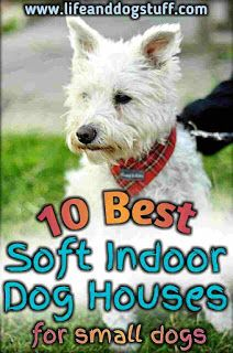 10 Best Soft Indoor Dog Houses For Small Dogs Dog Houses Soft