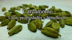 Recetas Caseras Fáciles MG: Cardamomo. Sem Internet, Celery, Health Benefits, Asparagus, Almond, Garlic, Yummy Food, Vegetables, Tips