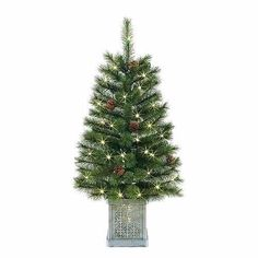 Small Christmas Tree Green Pine Indoor/Outdoor For Office And Home Decoration Small Christmas Trees, Bag Storage, Indoor Outdoor, Pine, Home And Garden, Decoration, Holiday Decor, Green, Ebay