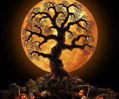 All Hallows Eve Moon