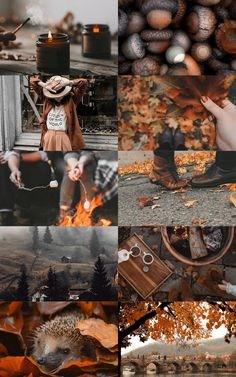 Autumn Aesthetic, Witch Aesthetic, Aesthetic Collage, Fall Pictures, Fall Photos, Fall Home Decor, Autumn Home, Autumn Inspiration, Color Inspiration