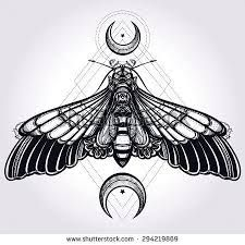 Image result for butterfly moon tattoo