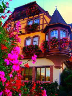 Official Website ✅ Best Rates Guaranteed: Charming and luxury hotel in the heart of Alsace with Spa & Gourmet restaurant. Parc Hotel, Places To Travel, Places To Go, Loire Valley, Ville France, Autumn Scenery, Belle Villa, French Countryside, Beautiful Places To Visit