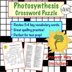 Photosynthesis Crossword Puzzle.  Crossword puzzles are a fantastic way to review the vocabulary associated with any given unit.  Not only do they reinforce the terms and definitions, but they are perfect for spelling practice of difficult terms.  This puzzle on photosynthesis covers 57 terms and concepts used in photosynthesis.