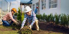 Testemunhas de Jeová trabalhando no jardim de um novo Salão do Reino