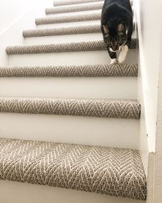 carpet flooring Its Transformation Tuesday! How do you like your new stair runner walllll_eee - Carpets Mag Stairway Carpet, Carpet Stair Treads, How To Carpet Stairs, Pattern Carpet On Stairs, Carpet Runner On Stairs, Stairs With Wood And Carpet, Staircase With Runner, Tile On Stairs, Stairs To Basement