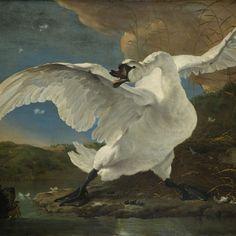The Threatened Swan, Jan Asselijn, c. 1650 - Rijksmuseum