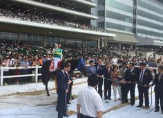 7/19/16. Power Blade (Kor) (Menifee) became the first horse in the relatively tender history of the Korean Racing Association to sweep the nation's Triple Crown, completing the task with a seven-length demolition of Sunday's M₩500 …