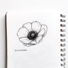"1,758 mentions J'aime, 28 commentaires - Meghan Davey✌🏻 (@heysailor_) sur Instagram : ""Day 19 of #floralsyourway - anemone 😘 . . . #flowers #floralillustration #art #illustration #sketch…"""