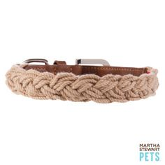 Martha Stewart Pets® Braided Dog Collar   Collars   PetSmart $16.99