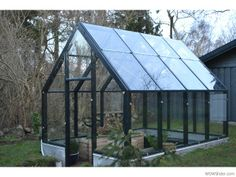 All glas in place Plataform Bed, Patio, Treehouse, Corning Glass, Treehouses, Tree Houses, Terrace