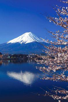 Cerejeiras, Monte Fuji, Japão via Prasit_Chansareekorn