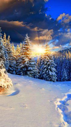 BEAUTÉ de la LUMÎÈRE lors d'un lever de soleil......qui est notre énergie (nourriture) du jour Winter Photography, Landscape Photography, Nature Photography, Winter Pictures, Nature Pictures, Winter Wonderland Wallpaper, Winter Magic, Winter Scenery, Snow Scenes